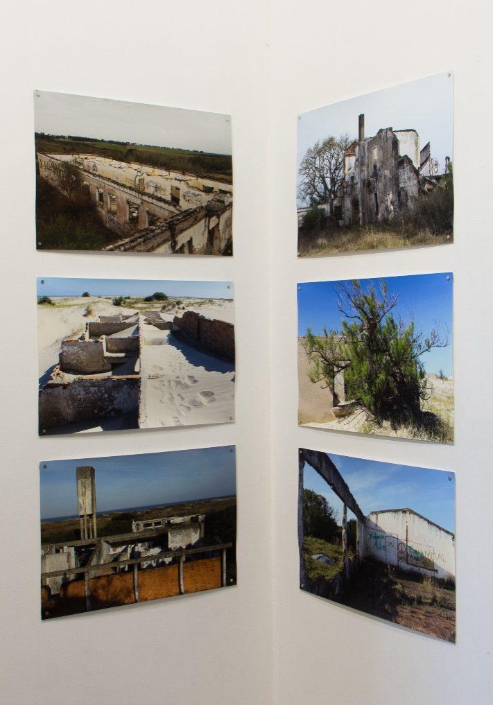 Paisagem horizonte (pedra semente), 2019. Fotografias em papel matte, dimensões variadas.